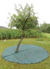 Robustes Erntenetz zur einfachen Ernte von Früchten und Nüssen
